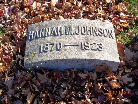 JOHNSON, HANNAH M. - Marquette County, Michigan | HANNAH M. JOHNSON - Michigan Gravestone Photos