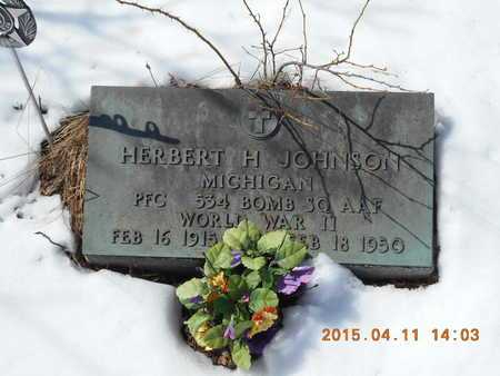 JOHNSON, HERBERT H. - Marquette County, Michigan | HERBERT H. JOHNSON - Michigan Gravestone Photos