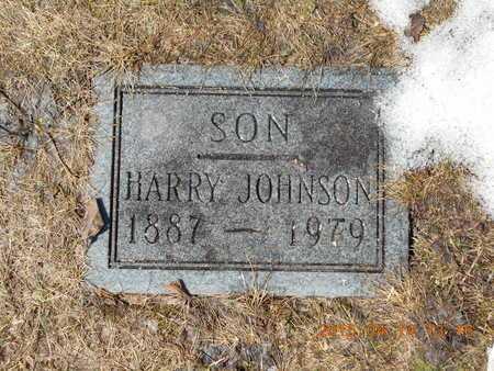 JOHNSON, HARRY - Marquette County, Michigan   HARRY JOHNSON - Michigan Gravestone Photos