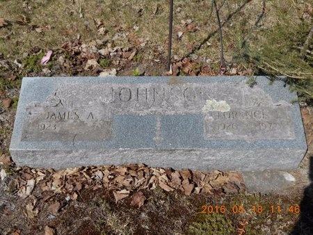 JOHNSON, FLORENCE E. - Marquette County, Michigan   FLORENCE E. JOHNSON - Michigan Gravestone Photos