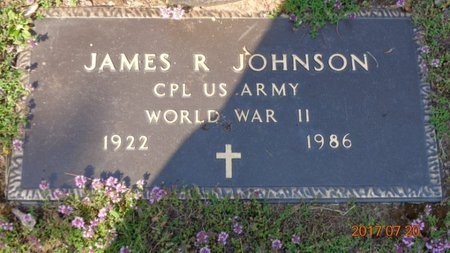 JOHNSON, JAMES R. - Marquette County, Michigan | JAMES R. JOHNSON - Michigan Gravestone Photos