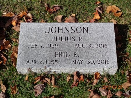 JOHNSON, JULIUS R. - Marquette County, Michigan | JULIUS R. JOHNSON - Michigan Gravestone Photos