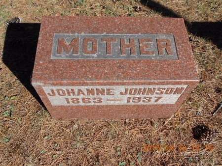 JOHNSON, JOHANNE - Marquette County, Michigan | JOHANNE JOHNSON - Michigan Gravestone Photos