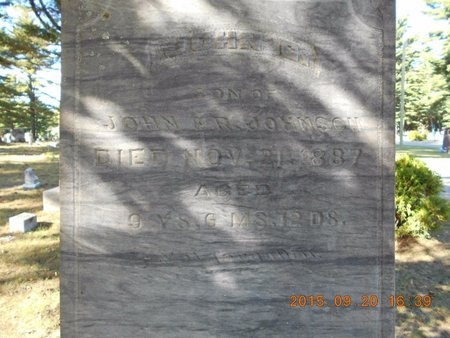 JOHNSON, JOHN G. - Marquette County, Michigan   JOHN G. JOHNSON - Michigan Gravestone Photos
