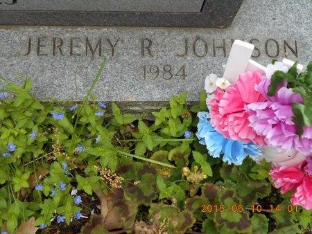 JOHNSON, JEREMY R. - Marquette County, Michigan | JEREMY R. JOHNSON - Michigan Gravestone Photos