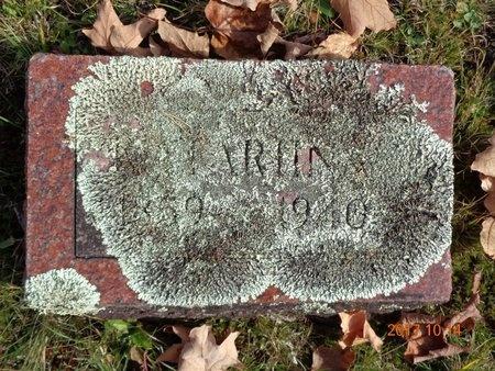 JOHNSON, KATARIINA - Marquette County, Michigan   KATARIINA JOHNSON - Michigan Gravestone Photos