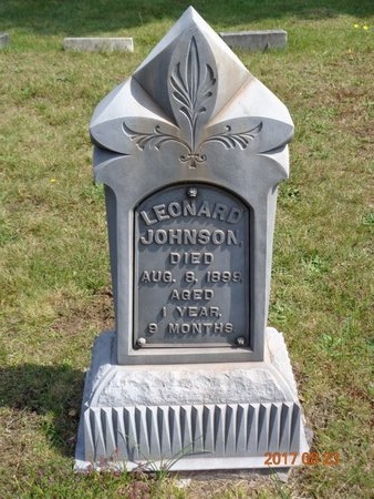 JOHNSON, LEONARD - Marquette County, Michigan | LEONARD JOHNSON - Michigan Gravestone Photos