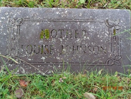 JOHNSON, LOUISE - Marquette County, Michigan | LOUISE JOHNSON - Michigan Gravestone Photos