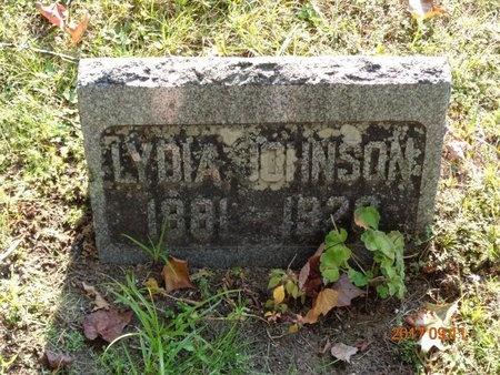 JOHNSON, LYDIA - Marquette County, Michigan | LYDIA JOHNSON - Michigan Gravestone Photos