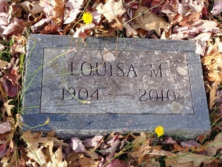 JOHNSON, LOUISA M. - Marquette County, Michigan | LOUISA M. JOHNSON - Michigan Gravestone Photos