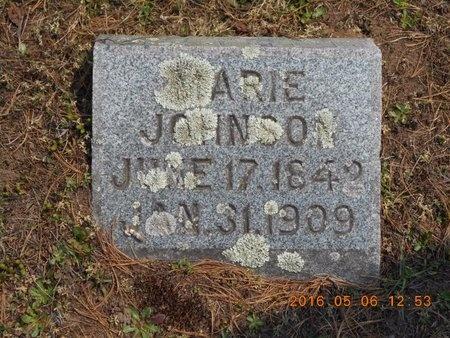 JOHNSON, MARIE - Marquette County, Michigan | MARIE JOHNSON - Michigan Gravestone Photos