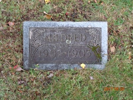 JOHNSON, MILDRED - Marquette County, Michigan | MILDRED JOHNSON - Michigan Gravestone Photos