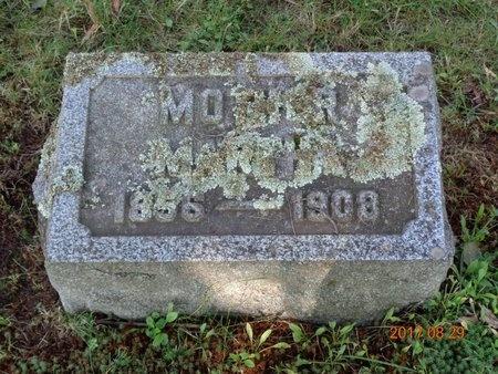 JOHNSON, MARTHA SOPHIE - Marquette County, Michigan | MARTHA SOPHIE JOHNSON - Michigan Gravestone Photos