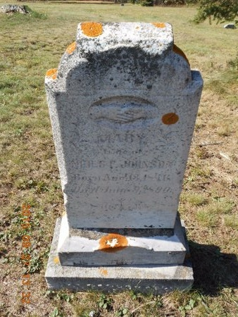 JOHNSON, MARY - Marquette County, Michigan   MARY JOHNSON - Michigan Gravestone Photos