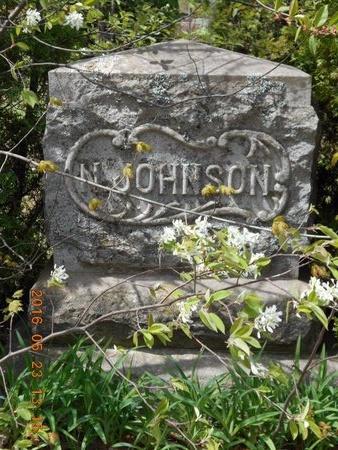 JOHNSON, NELS - Marquette County, Michigan | NELS JOHNSON - Michigan Gravestone Photos