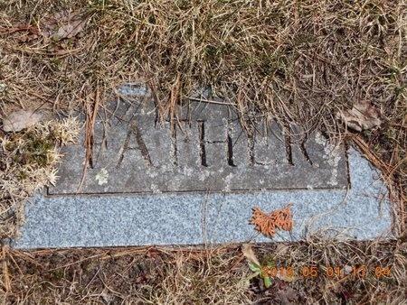 JOHNSON, OLIVER - Marquette County, Michigan   OLIVER JOHNSON - Michigan Gravestone Photos