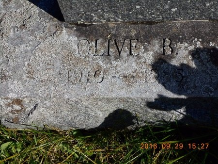 JOHNSON, OLIVE B. - Marquette County, Michigan | OLIVE B. JOHNSON - Michigan Gravestone Photos
