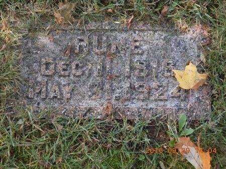 JOHNSON, RUNE - Marquette County, Michigan   RUNE JOHNSON - Michigan Gravestone Photos