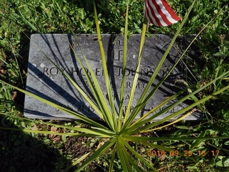 JOHNSON, ROY HOLEN - Marquette County, Michigan | ROY HOLEN JOHNSON - Michigan Gravestone Photos