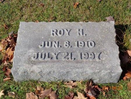JOHNSON, ROY H. - Marquette County, Michigan | ROY H. JOHNSON - Michigan Gravestone Photos