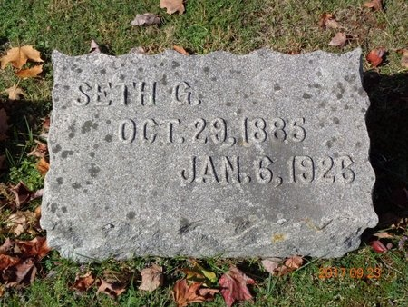 JOHNSON, SETH G. - Marquette County, Michigan | SETH G. JOHNSON - Michigan Gravestone Photos