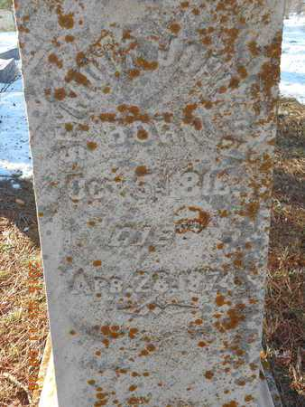 JOHNSON, SEYMOUR - Marquette County, Michigan | SEYMOUR JOHNSON - Michigan Gravestone Photos