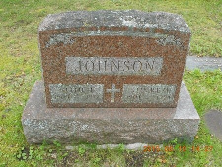 JOHNSON, NELLIE J. - Marquette County, Michigan | NELLIE J. JOHNSON - Michigan Gravestone Photos