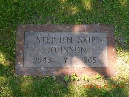 JOHNSON, STEPHEN - Marquette County, Michigan | STEPHEN JOHNSON - Michigan Gravestone Photos