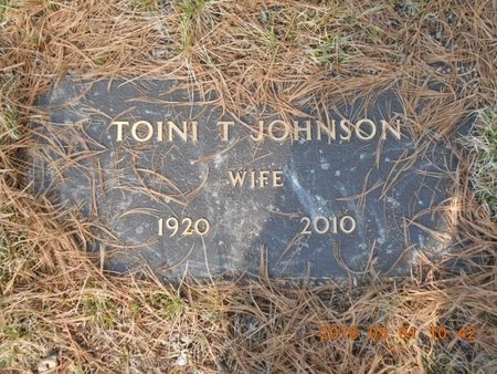 JOHNSON, TOINI T. - Marquette County, Michigan | TOINI T. JOHNSON - Michigan Gravestone Photos