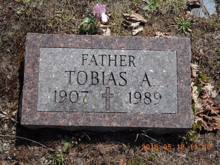 JOHNSON, TOBIAS A. - Marquette County, Michigan | TOBIAS A. JOHNSON - Michigan Gravestone Photos