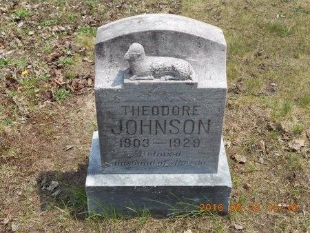 JOHNSON, THEODORE - Marquette County, Michigan | THEODORE JOHNSON - Michigan Gravestone Photos