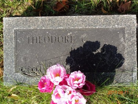JOHNSON, THEODORE C. - Marquette County, Michigan | THEODORE C. JOHNSON - Michigan Gravestone Photos