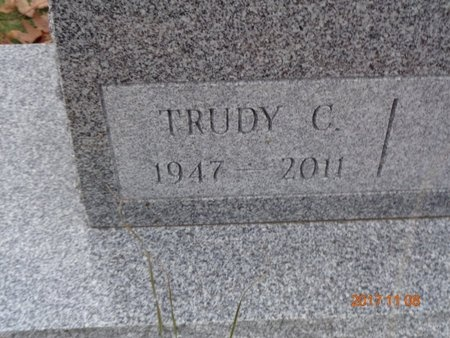 JOHNSON, TRUDY C. - Marquette County, Michigan | TRUDY C. JOHNSON - Michigan Gravestone Photos
