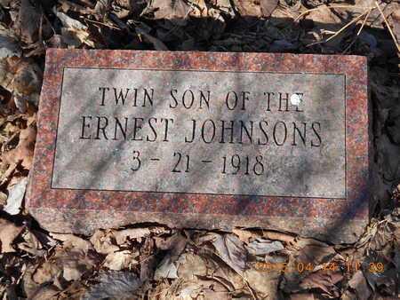 JOHNSON, TWIN SON - Marquette County, Michigan | TWIN SON JOHNSON - Michigan Gravestone Photos