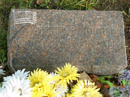 JOHNSON, THURE B. - Marquette County, Michigan   THURE B. JOHNSON - Michigan Gravestone Photos