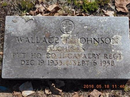 JOHNSON, WALLACE - Marquette County, Michigan   WALLACE JOHNSON - Michigan Gravestone Photos