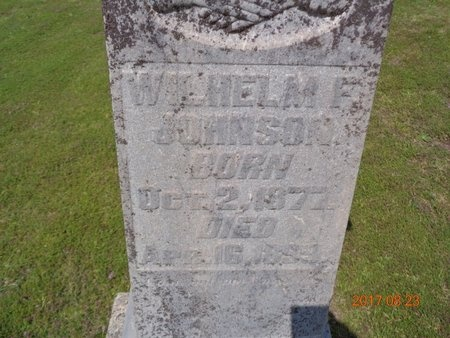 JOHNSON, WILHELM F. - Marquette County, Michigan | WILHELM F. JOHNSON - Michigan Gravestone Photos