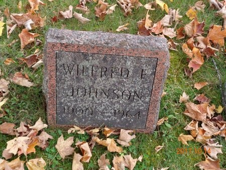 JOHNSON, WILFRED E. - Marquette County, Michigan | WILFRED E. JOHNSON - Michigan Gravestone Photos