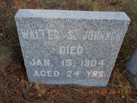 JOHNSON, WALTER S. - Marquette County, Michigan | WALTER S. JOHNSON - Michigan Gravestone Photos