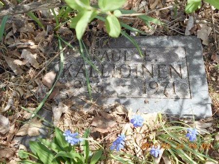 KALLIOINEN, PAUL E. - Marquette County, Michigan   PAUL E. KALLIOINEN - Michigan Gravestone Photos