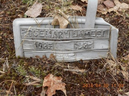 LAMERE, ROSEMARY - Marquette County, Michigan | ROSEMARY LAMERE - Michigan Gravestone Photos