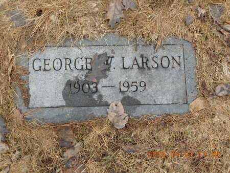 LARSON, GEORGE W. - Marquette County, Michigan   GEORGE W. LARSON - Michigan Gravestone Photos