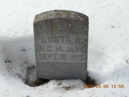 LUSTILA, CHRISTINA - Marquette County, Michigan   CHRISTINA LUSTILA - Michigan Gravestone Photos