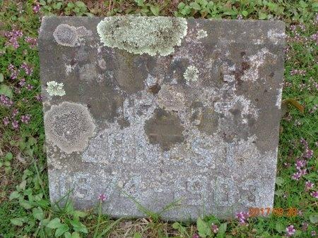 MALMGREN, ANNE G. - Marquette County, Michigan | ANNE G. MALMGREN - Michigan Gravestone Photos