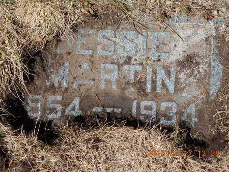 MARTIN, JESSIE - Marquette County, Michigan | JESSIE MARTIN - Michigan Gravestone Photos