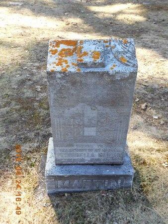 MARTIN, PETRONELLA - Marquette County, Michigan | PETRONELLA MARTIN - Michigan Gravestone Photos