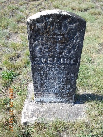 MCDONALD, EVELINE - Marquette County, Michigan | EVELINE MCDONALD - Michigan Gravestone Photos