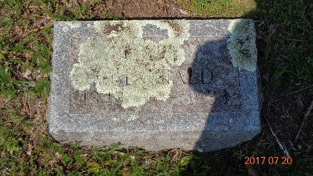 MCDONALD, MARY - Marquette County, Michigan | MARY MCDONALD - Michigan Gravestone Photos