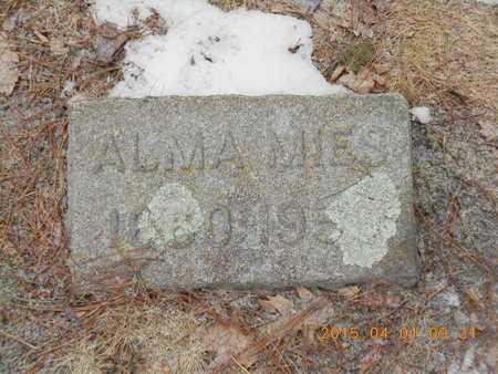 MIES, ALMA D. - Marquette County, Michigan | ALMA D. MIES - Michigan Gravestone Photos