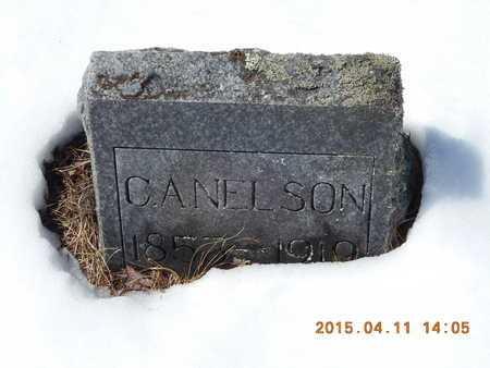 NELSON, C.A. - Marquette County, Michigan | C.A. NELSON - Michigan Gravestone Photos